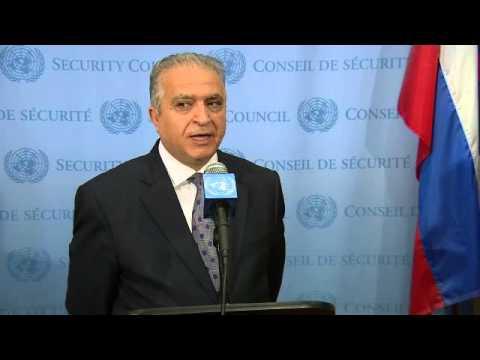 Ambasciatore iracheno all'Onu