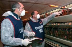 Due carabinieri del Nas, durante un'ispezione