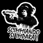 Scimmiando si impara!