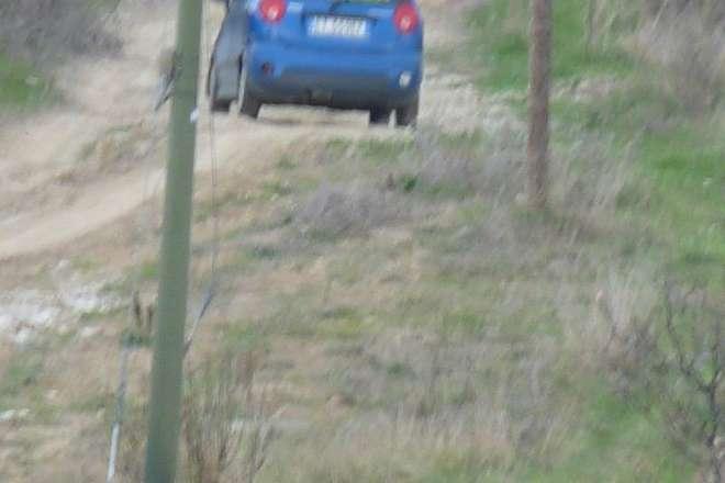 L'immagine che ritrae la targa del veicolo