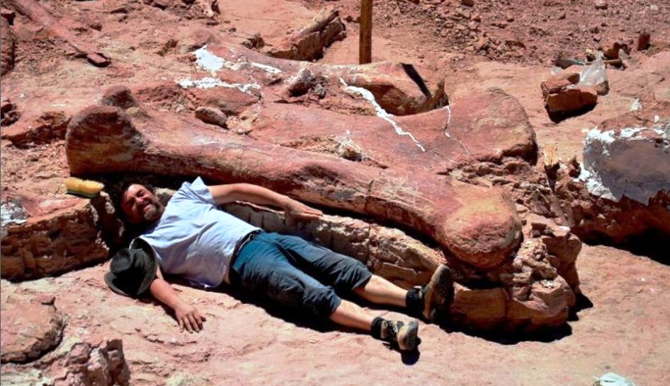 Dinosauro scoperto in Argentina
