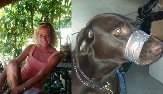 Katie Brown e il suo cane