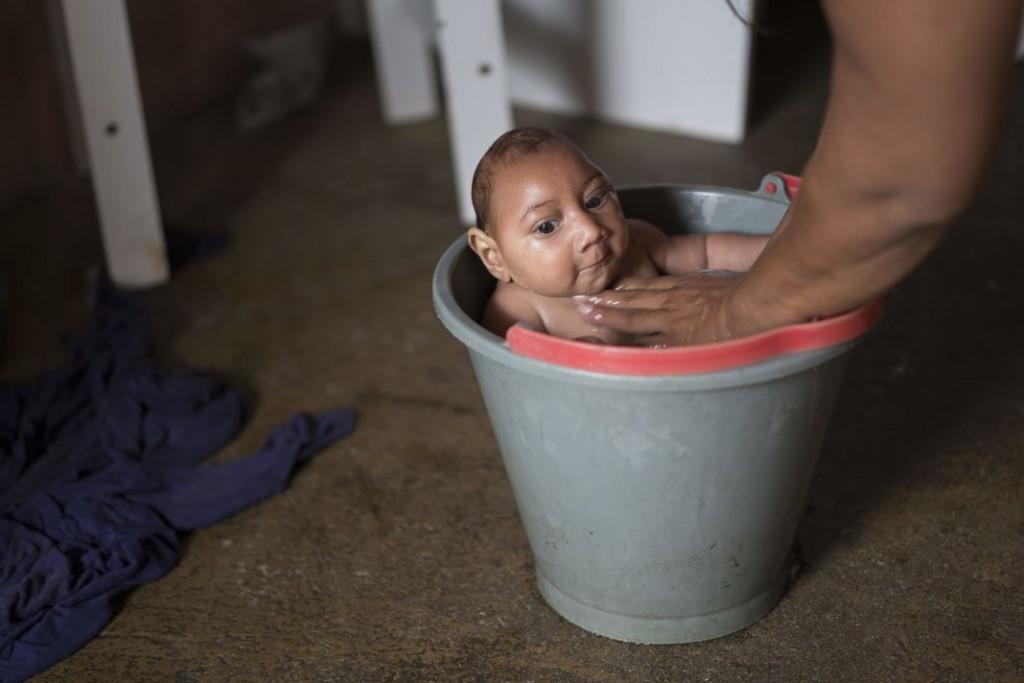 Brasile martoriato dal virus Zika