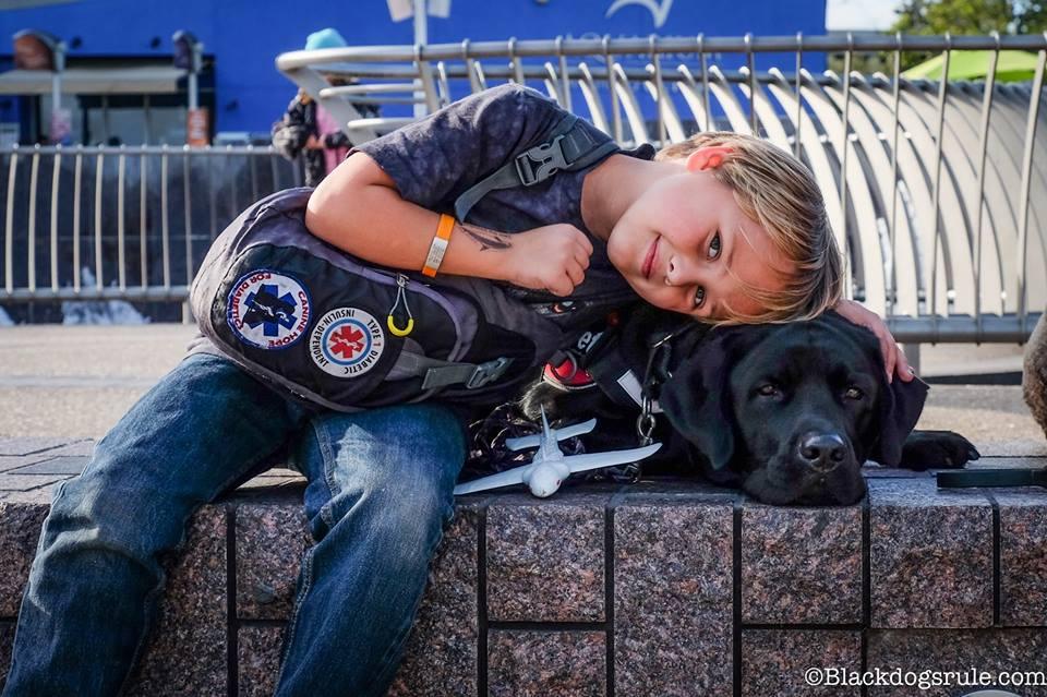 Cane salva il padroncino malato fiutando il diabete