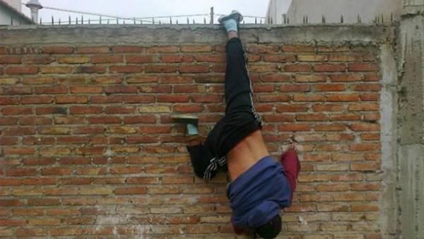 Ladro penzolante sul muro