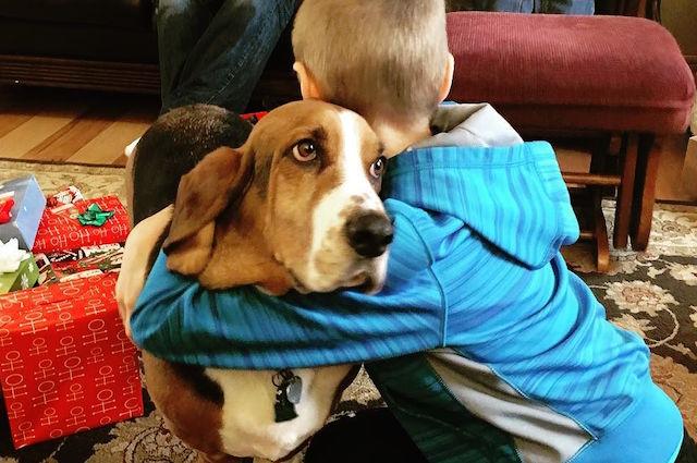 I cani odiano gli abbracci, la scienza ci svela perchè