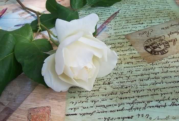 Trova una lettera del marito morto