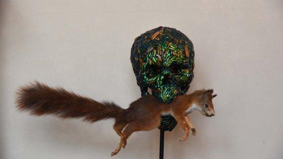 Lo scoiattlo in bocca al teschio