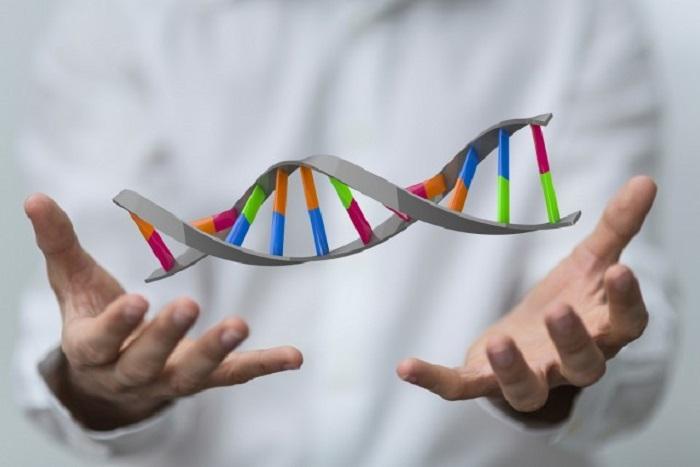 """""""C'è una sequenza di DNA alieno nella leucemia mieloide acuta"""""""