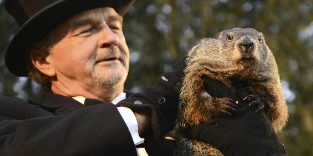 La marmotta Phil