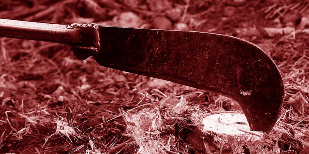 Donna uccide marito a colpi di roncola