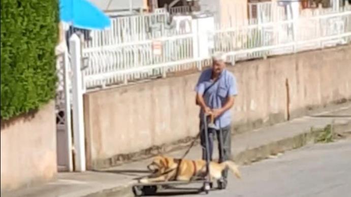 Calabria, anziano a spasso con il suo cane malato