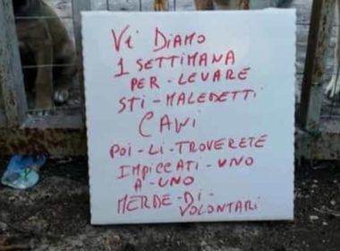 Volontari animalisti minacciati