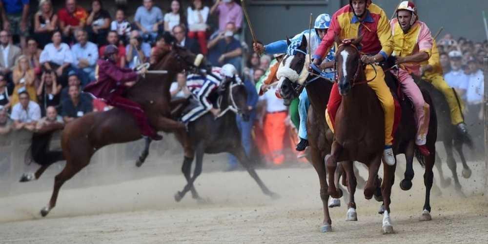 Palio di Siena Straordinario: muore il cavallo Raol.