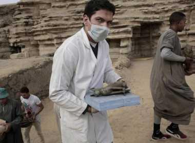 Egitto: trovate mummie di gatti e scarabei.