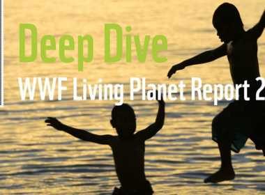 Wwf: i dati del Living Planet Report 2018.