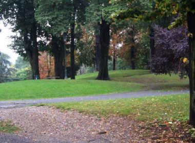 Torino, tenta di violentare una donna al parco